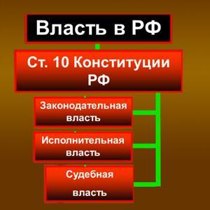 Органы власти Куркино